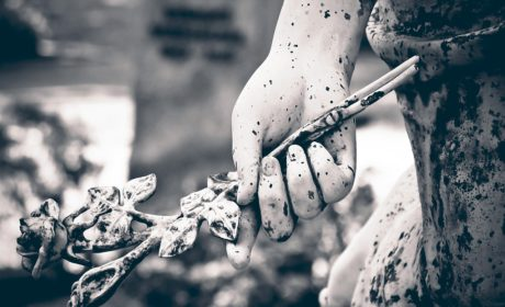 Kwiaty śmierci